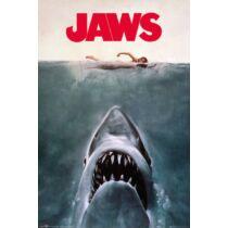 A cápa plakát - Art