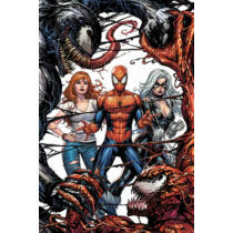 Venom plakát - Venom és Carnage harca