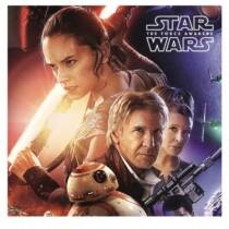 Star Wars: Az ébredő Erő párnahuzat - kétoldalas mintával