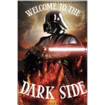 Star Wars Darth Vader plüss takaró, ágytakaró