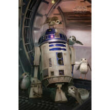 Star Wars: Az utolsó Jedik plakát - R2-D2 és a Porgok