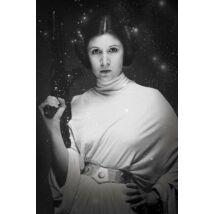 Star Wars - Leia hercegnő plakát