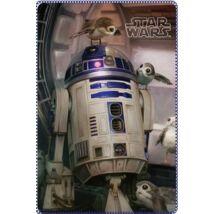 Star Wars: Az utolsó Jedik polár takaró - R2-D2 és a Porgok
