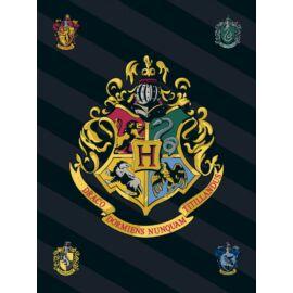 Harry Potter polár takaró, ágytakaró - Hogwarts