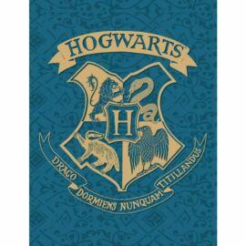 Harry Potter polár takaró, ágytakaró - Hogwarts - Nagy méretben
