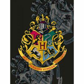 Harry Potter polár takaró, ágytakaró - Logó - Nagy méretben