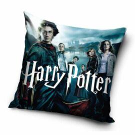 Harry Potter párnahuzat -  Wizard students