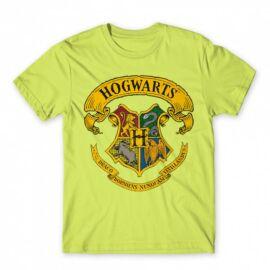 Harry Potter férfi rövid ujjú póló - Hogwarts color