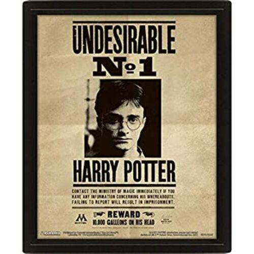 Harry Potter 3D hologramos poszter kerettel - Harry és Sirius