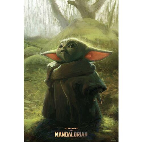 Star Wars: The Mandalorian plakát - Baby Yoda